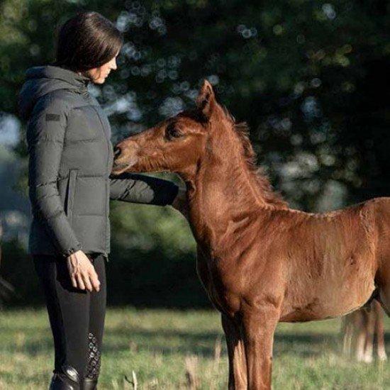 Куртка Cavalleria Toscana Dawn Padded