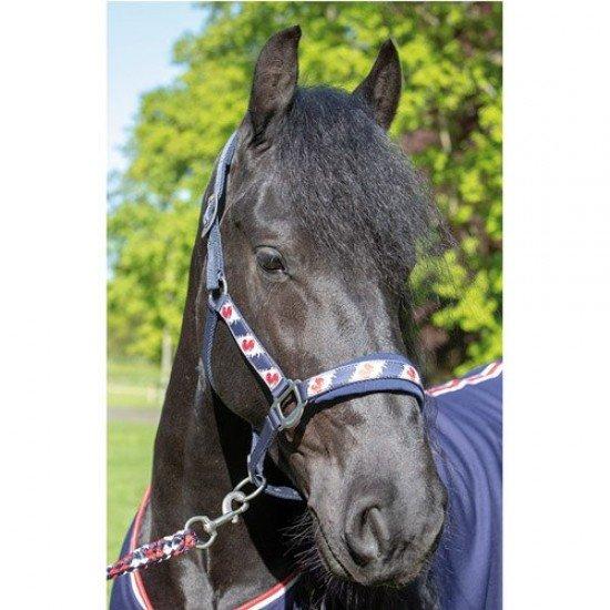 Недоуздок + чомбур Harrys Horse