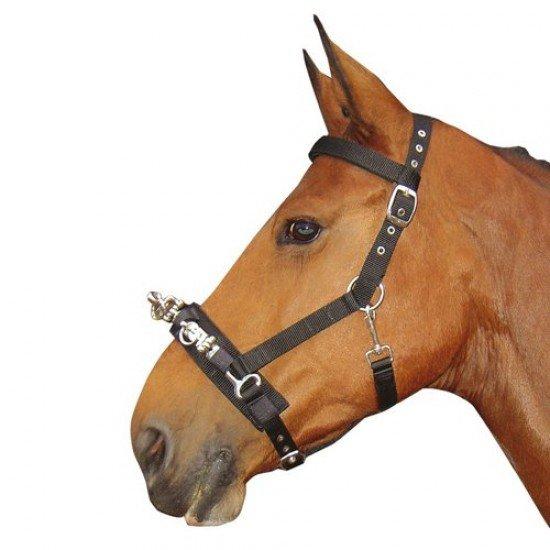 Капцунг Harrys Horse
