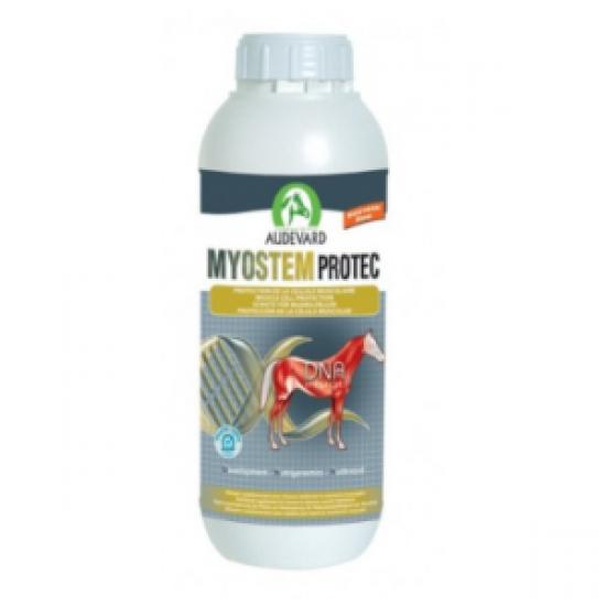 Пищевая поддержка для увеличения мышечной силы лошадей Myostem Protec, AUDEVARD