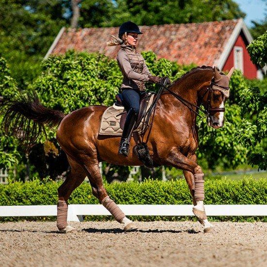 Вальтрап выездковый Equestrian Stockholm CHAMPAGNE